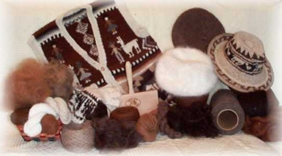 wool_samples_8_vignette_web.jpg